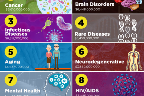 The 10 Best Funded Disease Researches in 2019