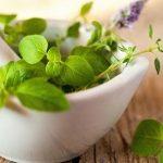 5 Useful AyurvedIc Herbs for Good Health